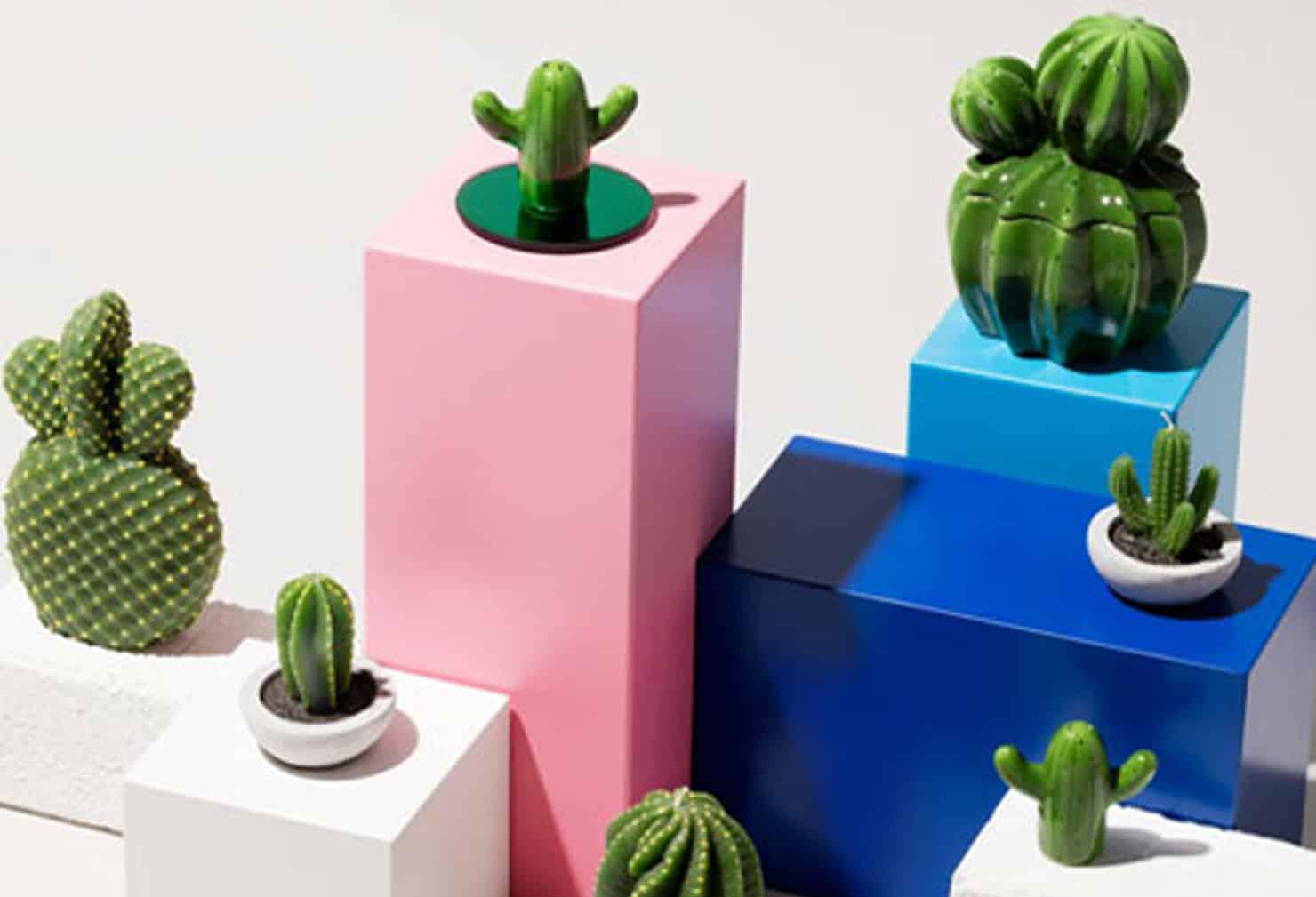 Le cactus: un objet déco piquant et surréaliste