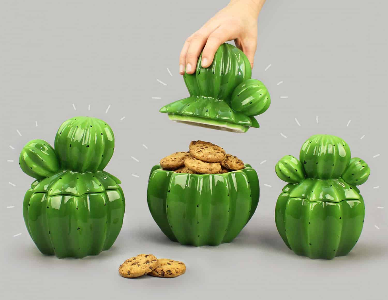 cactus objet