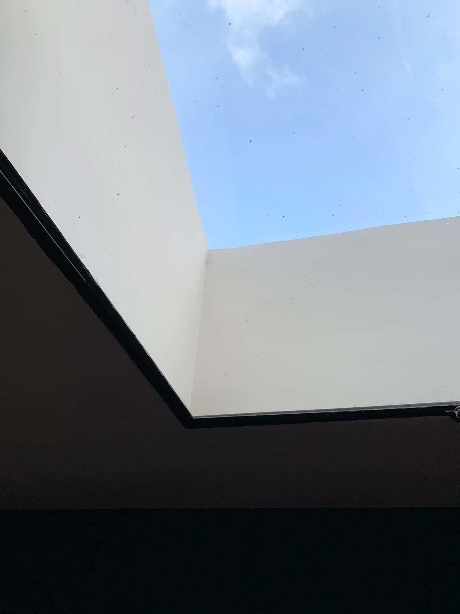 Visite Maison La Roche - Le Corbusier - Bibliothèque